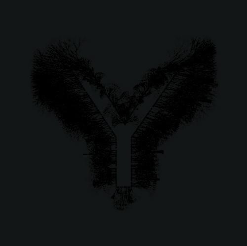 Y_Y-abstrct