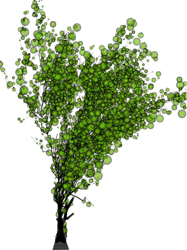tree1medium2x1459126663.jpg