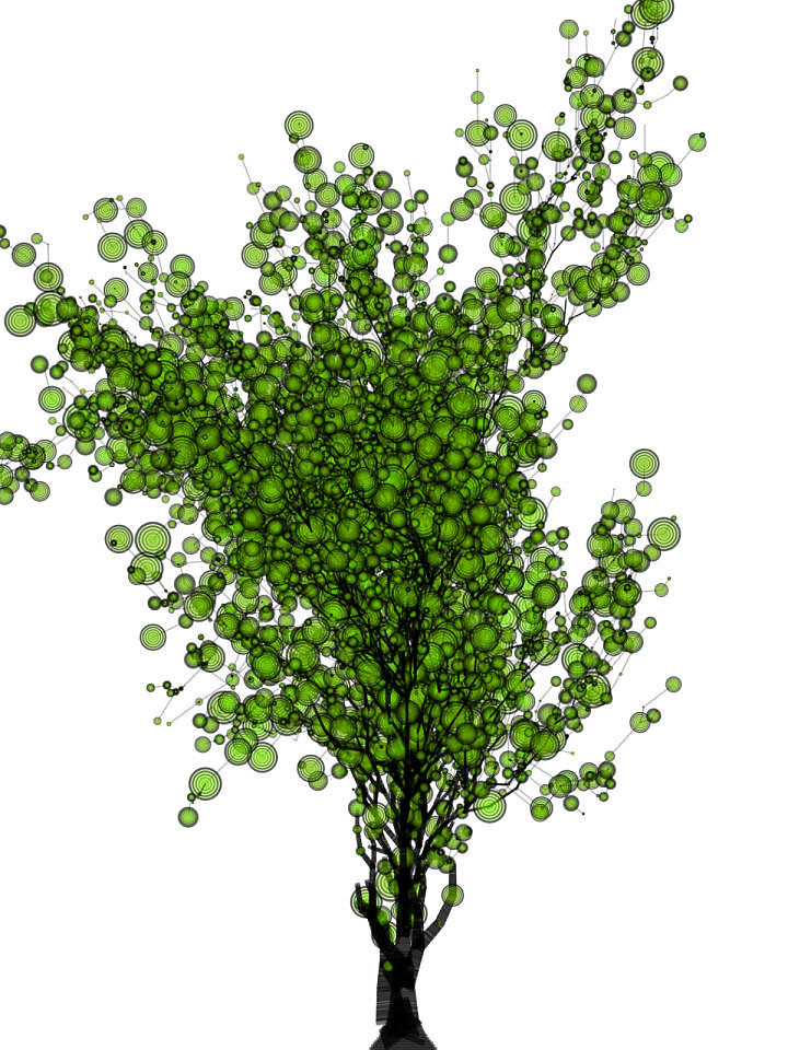 tree2medium2x1459126701.jpg