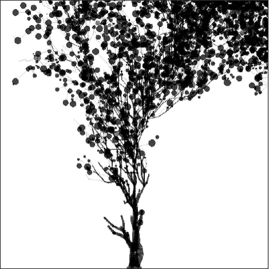 tree-large-2medium2x1483338642.jpg